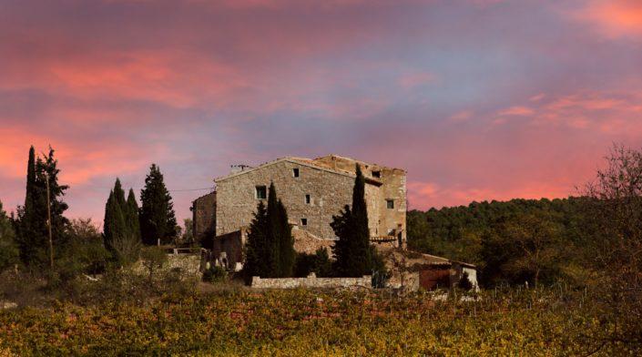 Immobilien auf Mallorca von Platin Immobilien